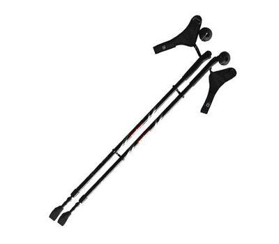 Палки для скандинавской ходьбы Ergoforce E 0674